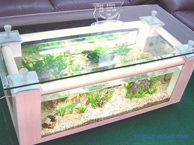 D'une Aquarium À D'un Appartement Maison Ou L'intérieur FTK13cJl